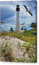 Pelican Flying Over Cape Florida Lighthouse Acrylic Print