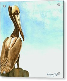Acrylic Print featuring the painting Pelican by Jeanne Kay Juhos