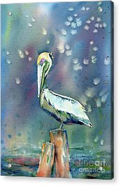 Acrylic Print featuring the painting Pelican by Mary Haley-Rocks