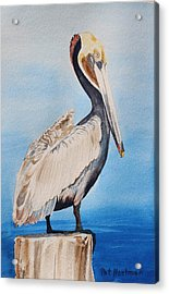 Pelican On Post Acrylic Print