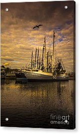 Pelican Over Mattie Fay Acrylic Print by Marvin Spates