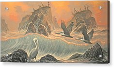 Pelican Paradise Acrylic Print by Marte Thompson
