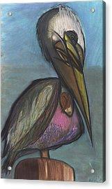 Pelican Acrylic Print by Stu Hanson