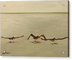 Pelican Study 3 Acrylic Print by Liz Rose