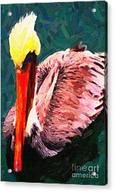 Pelican Wading In Water Acrylic Print by Wingsdomain Art and Photography