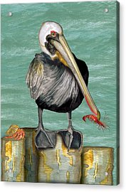 Acrylic Print featuring the painting Pelican With Shrimp by Anne Beverley-Stamps