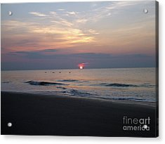Pelicans At Sunrise On Tybee  Acrylic Print