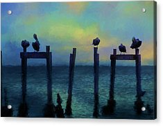 Acrylic Print featuring the photograph Pelicans At Sunset by Jan Amiss Photography