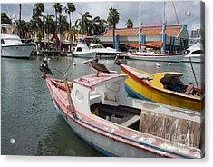 Pelicans On A Small Fishing Boat At Oranjestad Harbor, Aruba, Caribbean Islands Acrylic Print