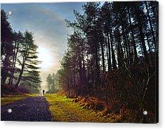 Pembrey Country Park 1 Acrylic Print