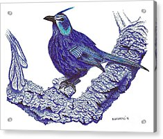 Pen And Ink Drawing Of Blue Bird Acrylic Print by Mario Perez