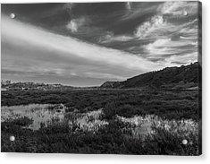 Penasquitos Creek Marsh Acrylic Print