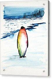 Penguin 1 Acrylic Print by Carolyn Doe