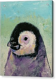 Penguin Chick Acrylic Print by Michael Creese