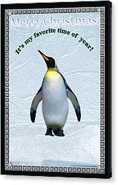 Penguin Christmas Acrylic Print by Steve Karol