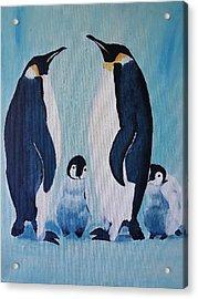 Penguin Family  Acrylic Print