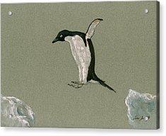 Penguin Jumping Acrylic Print by Juan  Bosco