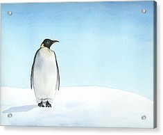 Acrylic Print featuring the painting Penguin Watercolor by Taylan Apukovska