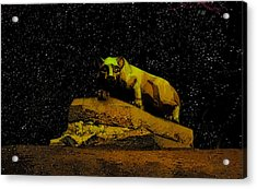 Penn State Stars Acrylic Print
