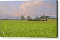 Penngrove Field Acrylic Print by Thomas  Hansen