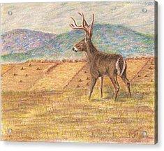 Pennsylvania Dawn Acrylic Print by Joann Renner