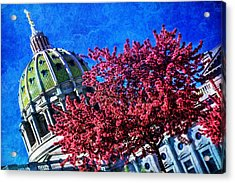 Acrylic Print featuring the photograph Pennsylvania State Capitol Dome In Bloom by Shelley Neff