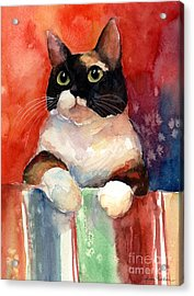 Pensive Calico Tubby Cat Watercolor Painting Acrylic Print