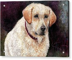 Pensive Golden Retriever Acrylic Print by Melissa J Szymanski