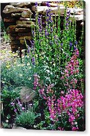 Acrylic Print featuring the photograph Penstemon Garden by P Maure Bausch