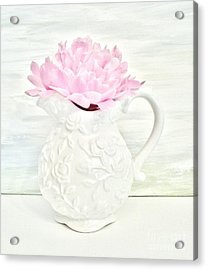 Peony In A Pitcher Acrylic Print by Marsha Heiken