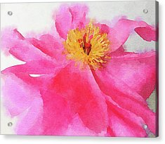 Acrylic Print featuring the digital art Peony by Mark Greenberg