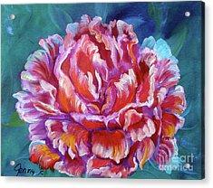 Peony No. 2 Jenny Lee Discount Acrylic Print