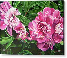Acrylic Print featuring the painting Peony Trilogy by Lee Nixon