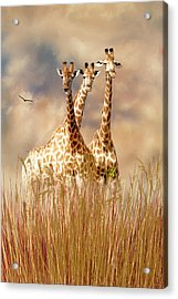 Acrylic Print featuring the photograph People Watchers by Diane Schuster
