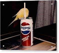 Pepsi Girl Acrylic Print
