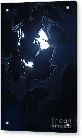 Perception Acrylic Print