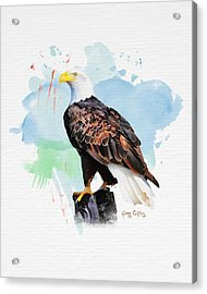 Acrylic Print featuring the painting Perched Eagle by Greg Collins