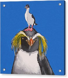 Percy The Penguin Acrylic Print
