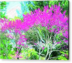 Acrylic Print featuring the photograph Perennial Garden by Susan Carella