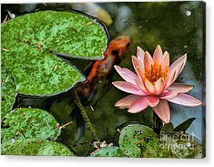 Perfect Beauty And Koi Companion Acrylic Print