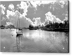 Perfect Combination Acrylic Print by Diana Angstadt