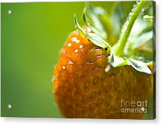 Perfect Fruit Of Summer Acrylic Print by Heiko Koehrer-Wagner
