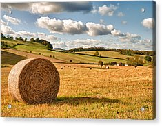 Perfect Harvest Landscape Acrylic Print by Amanda Elwell