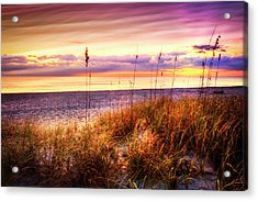 Perfect Morning At The Dunes Acrylic Print by Debra and Dave Vanderlaan