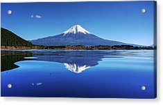 Acrylic Print featuring the photograph Perfect Shape, Perfect Blue by Peter Thoeny