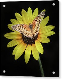 Perfect Timing Acrylic Print