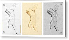 Perfume Of Venus - Triptych - Homage Rodin Acrylic Print