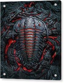 Permian Heat Acrylic Print by Jerry LoFaro
