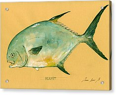 Permit Fish Acrylic Print by Juan  Bosco