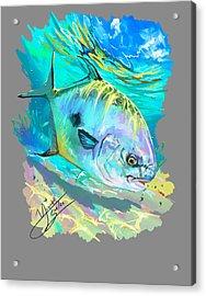 Permit On Fly  Acrylic Print